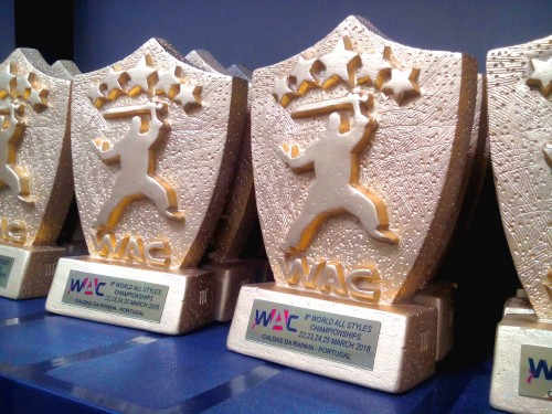 WAC 2018 - ONE MORE SUCESSFUL YEAR